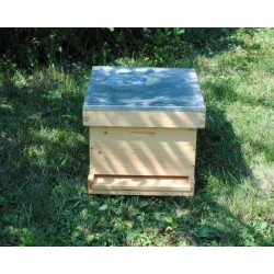 Multilevel beehive with 1...